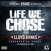 Life We Chose by Havoc