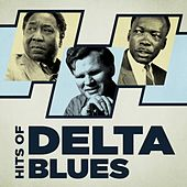 Hits of Delta Blues by Various Artists