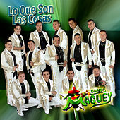 Lo Que Son las Cosas by Banda Maguey
