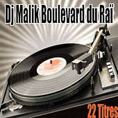 Boulevard du Raï, 22 titres by Various Artists