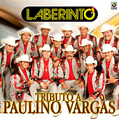 Tributo a Paulino Vargas by Laberinto
