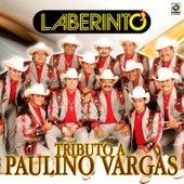 Tributo a Paulino Vargas by Laberinto