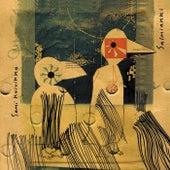 Salmiakki by Sami Koivikko