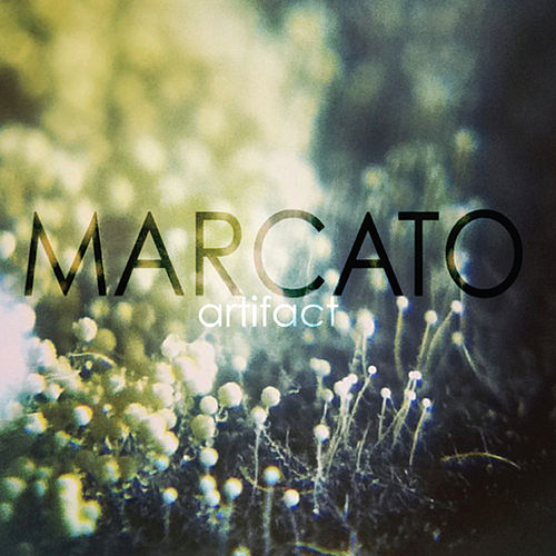 Artifact by Marcato