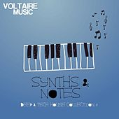 Synths and Notes 7.0 by Various Artists