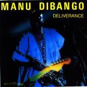 Deliverance by Manu Dibango