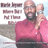 Where Did I Put Those Bits by Mario Joyner