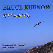 If I Could Fly by Bruce Kurnow