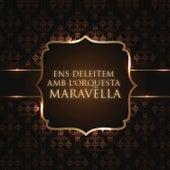 Ens Deleitem Amb L'Orquesta Maravella by Orquesta Maravella
