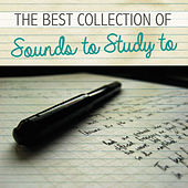 The Best Collection of Sounds to Study To by Various Artists