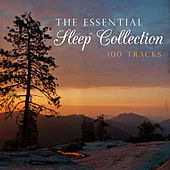 The Essential Sleep Collection by Various Artists