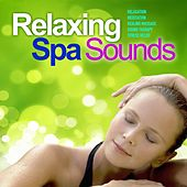 Relaxing Spa Sounds, Vol. 4 (Gentle Instrumental Music and Pure Nature Sounds for Relaxation, Meditation, Healing Massage, Sound Therapy, Stress Relief, Good Sleep) by Wellness