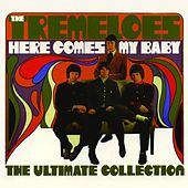Here Comes My Baby - The Ultimate Collection by The Tremeloes