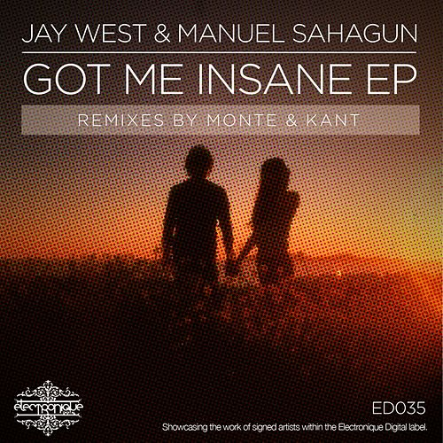 Got Me Insane by Jay West