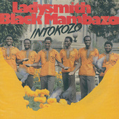 Intokozo by Ladysmith Black Mambazo