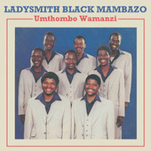 Umthombo Wamanzi by Ladysmith Black Mambazo