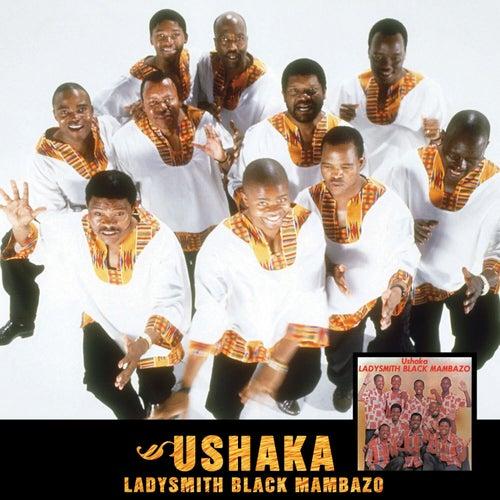 Ushaka by Ladysmith Black Mambazo