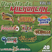 Orgullo De Michoacan by Various Artists