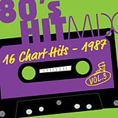 Hit Mix '87 Vol. 3  -  16 Chart Hits von Various Artists