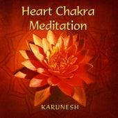 Heart Chakra Meditation by Karunesh