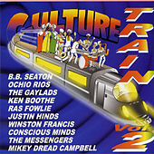 Culture Train Vol. 2 by Various Artists