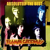 Absolutely the Best by The Flamin' Groovies