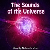Sounds of the Universe by Identity Network