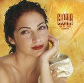 Oye Mi Canto by Gloria Estefan