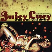 Who Do You Love - The Anthology by Juicy Lucy