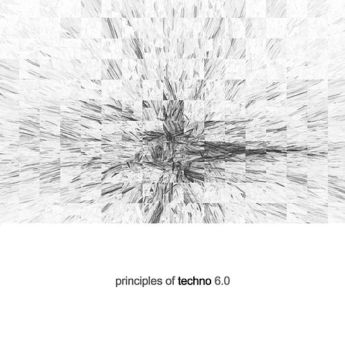 Principles Of Techno 6.0 by Various Artists