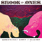 Slaughter of the Insole by Shook Ones
