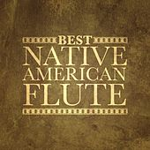 Best Native American Flute by Various Artists