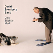 Only Slightly Mad by David Bromberg