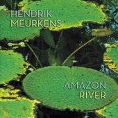 Amazon River by Hendrik Meurkens