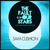 Fault Is in Our Stars by Sam Cushion
