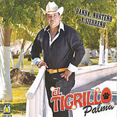Banda Norteno y Sierreno by El Tigrillo Palma