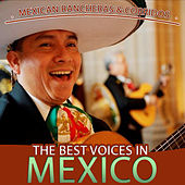 Mexican Rancheras and Corridos. The Best Voices in Mexico by Various Artists