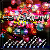 Estacion Exitos by Various Artists