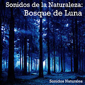Sonidos de la Naturaleza: Bosque de Luna by Natural Sounds