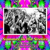 Summer in the Sixties von Various Artists