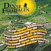 Dansefestivalen på Sel 2013 by Various Artists
