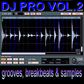 DJ Pro Vol. 2 by The Mixmasters