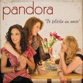Se Solicita un Amor by Pandora