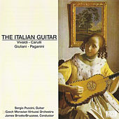 The Italian Guitar by Sergio Puccini