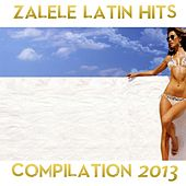 Zalele Compilation 2013 by Various Artists