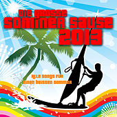 Die grosse Sommer Sause 2013 - Alle Songs für einen heissen Sommer by Various Artists