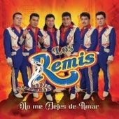 No Me Dejes De Amar by Los Remis