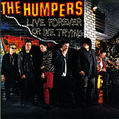 Live Forever or Die Trying by The Humpers