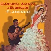 Flamenco by Sabicas