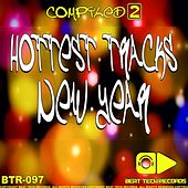Hottest Tracks New Year - Compiled 2 by Various Artists